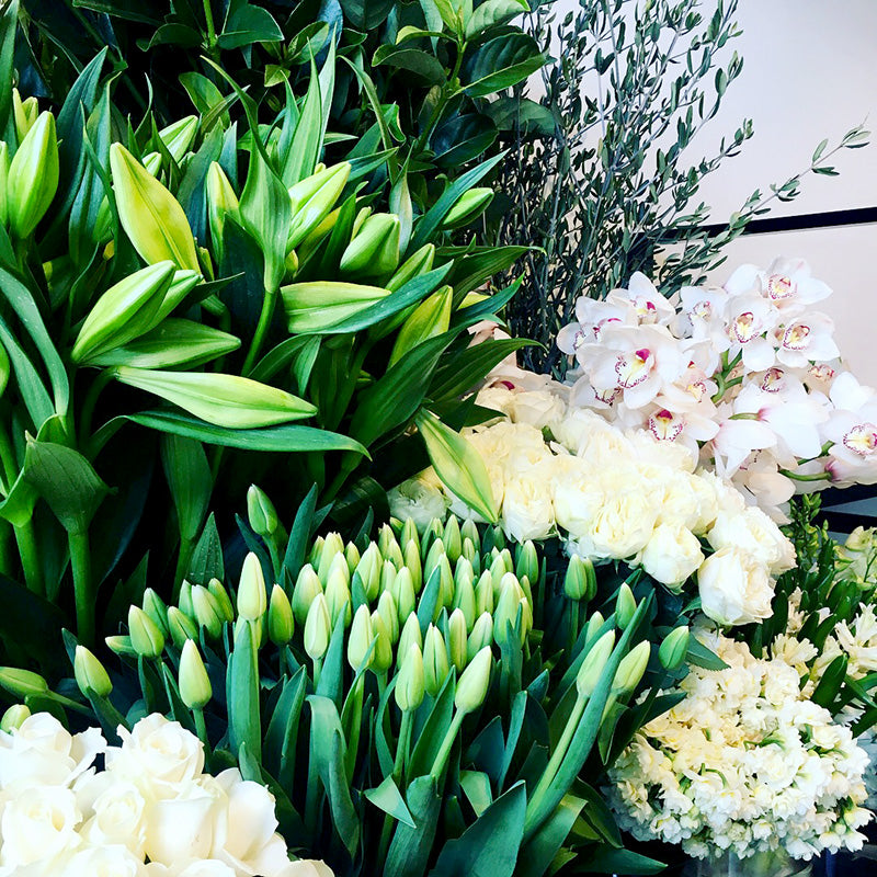 White and green winter flowers on display in Melbourne Florist