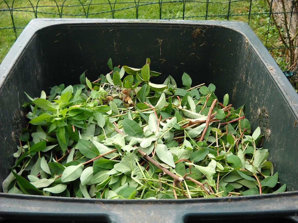 Green waste in bin