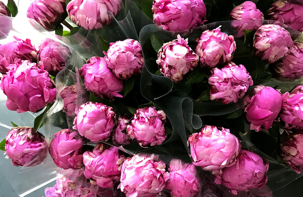 Pink peonies for sale in flower shop