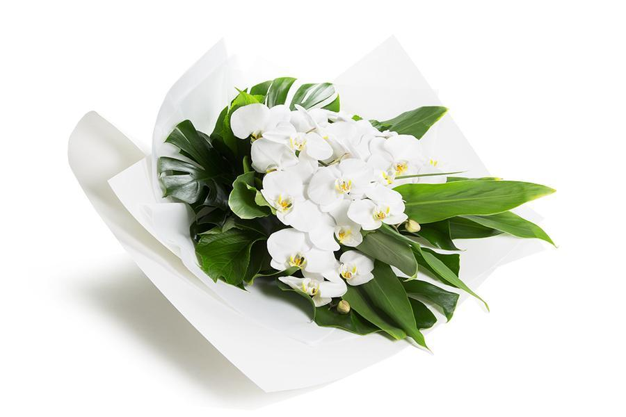 Send Flowers To Melbourne with Kate Hill Flowers