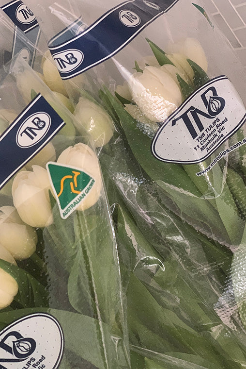 White tulips in plastic wrapping