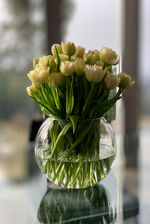 Arrangement of white tulips on glass dining table