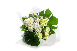 Hand tied bouquet featuring white hydrangea and green foliage all gift wrapped in white paper