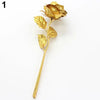 Gold Plated Rose