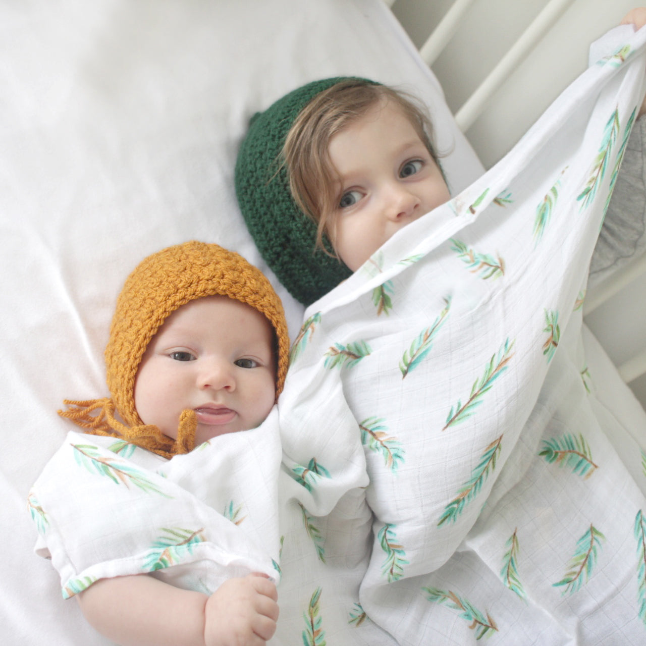 Organic Fitted Cot Sheet - Olive Branch