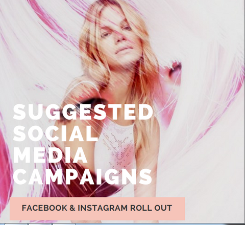 Suggested Social Media Campaigns