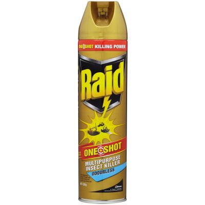 Raid Odourless Insect Killer One Shot 320g