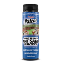 Ant Sand Advanced Fixant 750g