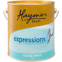 Haymes Ceiling White Expressions UP