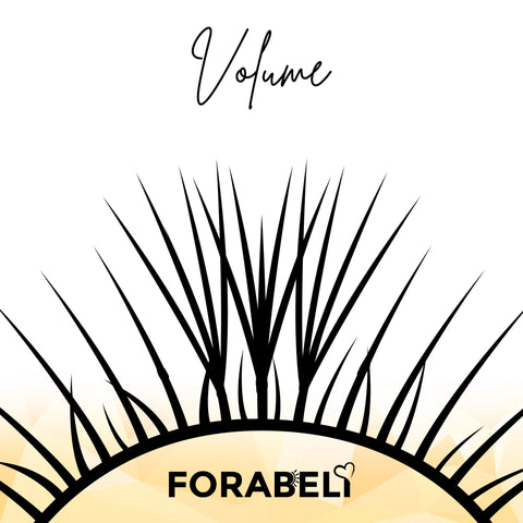 A vector art of a natural lash line with a total of 25 natural lashes. On top of 3 centered natural lashes are volume 4D eyelash extension fans.
