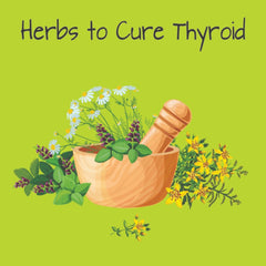 Herbs to Treat Hormonal Imbalance in Thyroid Patients