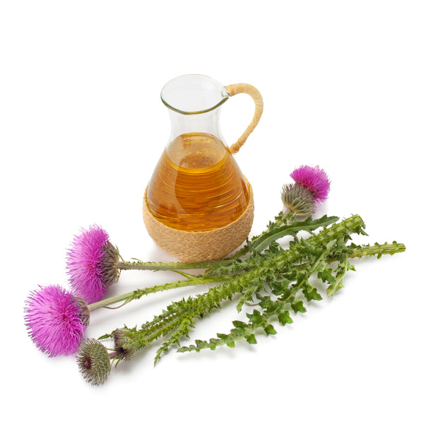 Milk Thistle: What You Should Know