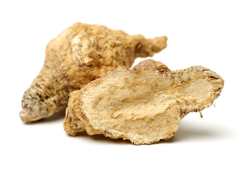 The Maca Adaptogen Root Health Benefits