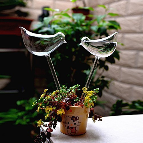 Self-watering Birdie Glass Bulbs