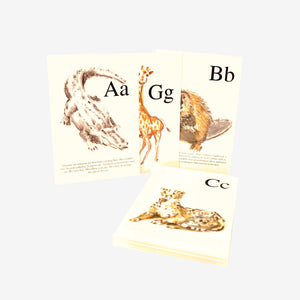 Sample postcards A, B, C, G from the Woods in the Books A-Z Animal Postcard set
