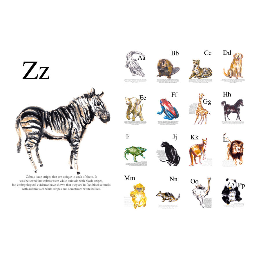 A-Z Animal Postcard Set