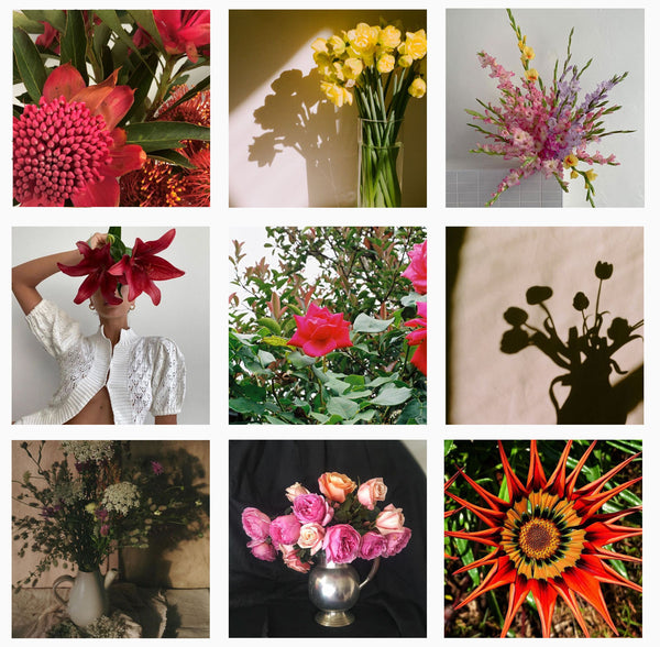 fave florals competition entrants
