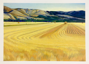 South Australian Landscape Card, Golden Summer on Malpas