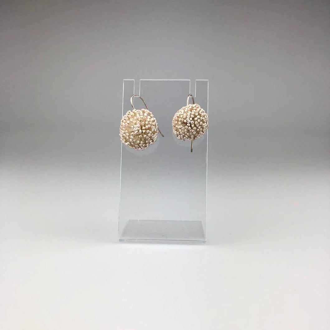 Hakea Bud Hook earrings