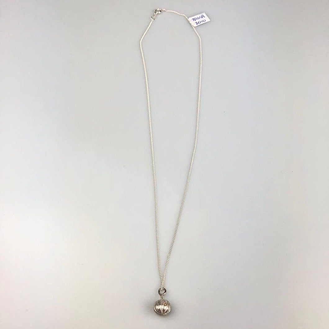 Botanical Nut Necklace on Silver Chain