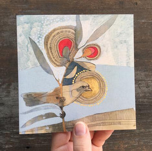 'Banded Whiteface and Eucalyptus' Artist Card