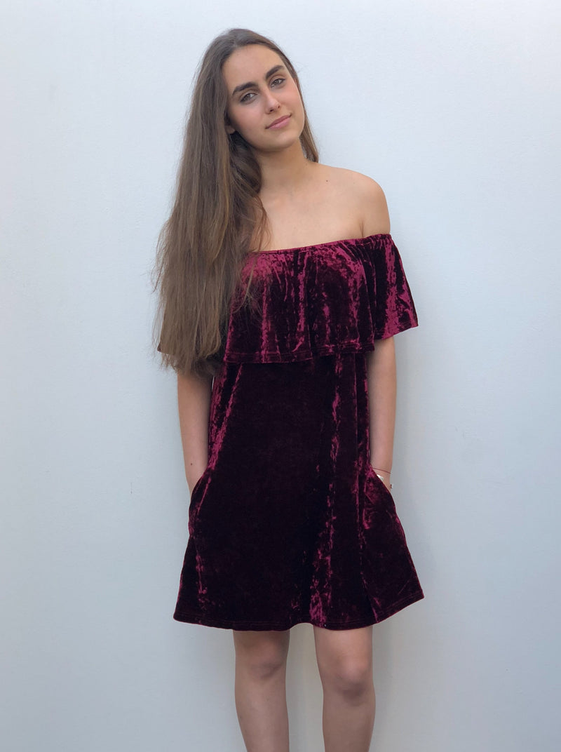 Fiorina Velvet Dress Burgundy