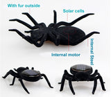 Solar Energy Powered Spider Cockroach Bug Grasshopper Toy for children