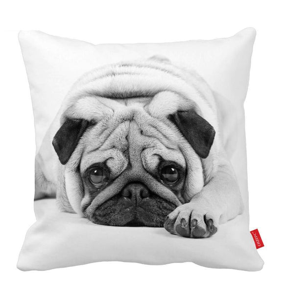 Resting Pug Black Pillow Cover