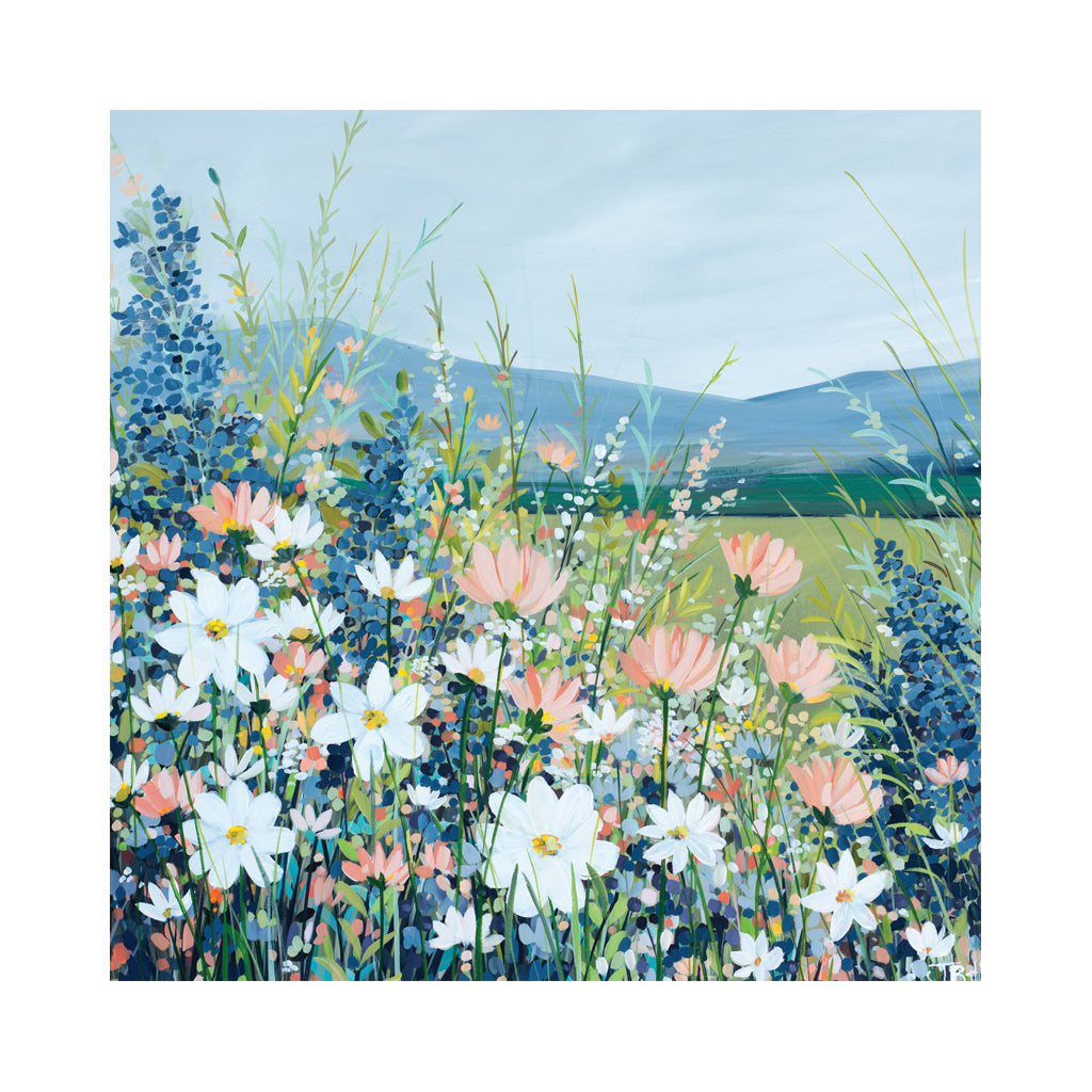 COSMOS Greetings Cards (x6)