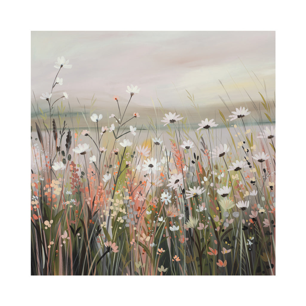 DAISIES AT DUSK Greetings Cards (x6)