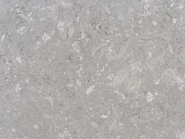 grigio alpi close up slab