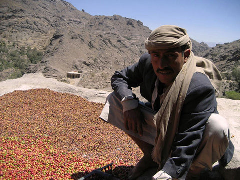 Haraz Mountains Mocha, Yemen - Green Bean