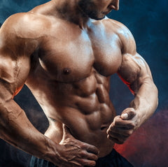 testosterone, tribulus terrestris, tribulus, how to gain muscle naturally,