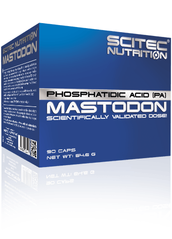 Phosphatidic Acid (PA), mastodon, muscle mass gain, Discount supplements, wholesale supplements suppliers, wholesale supplements for resale, where to buy wholesale supplements, clearance supplements, discounted bodybuilding supplements, cheap supplements, sport nutrition special offer, sport nutrition online shop, sport nutrition, scitec discount, scitec wholesale,