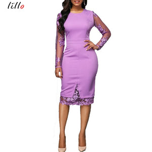 Professional Lace Long Sleeve Zip Back Dress   (S-xXL)