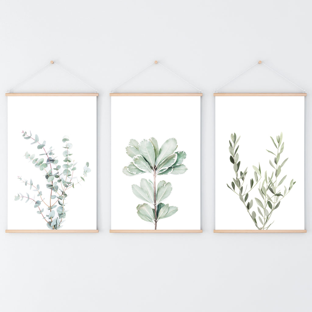 Botanical Set