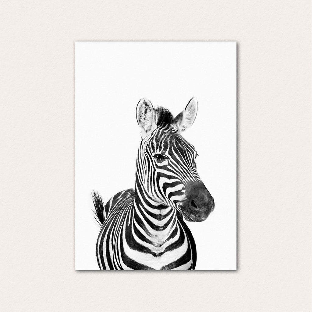 Happy Zebra BW