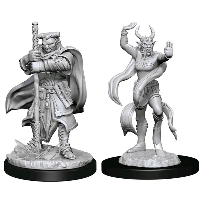 Dungeons and Dragons D&D: Nolzur's Marvelous Minis: Hobgoblin Devastator & Iron Shadow W13 Miniture