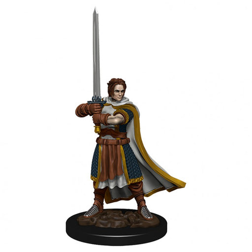 D&D: IR: Prem: Human Cleric Male Miniature (Pre-order) Dec 2020