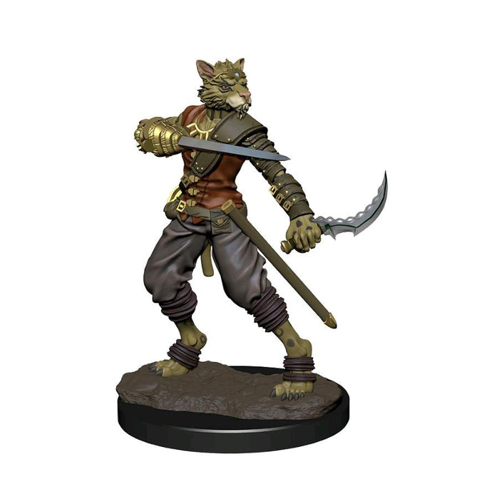 Dungeons and Dragons D&D: Icons of the Realms IR: Tabaxi Rogue Male Premium Miniature (Pre-order) May 2021