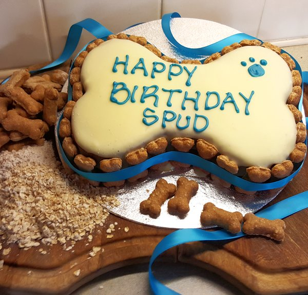 Personalised Dog Birthday Cake Large Bone Top Apparel UK