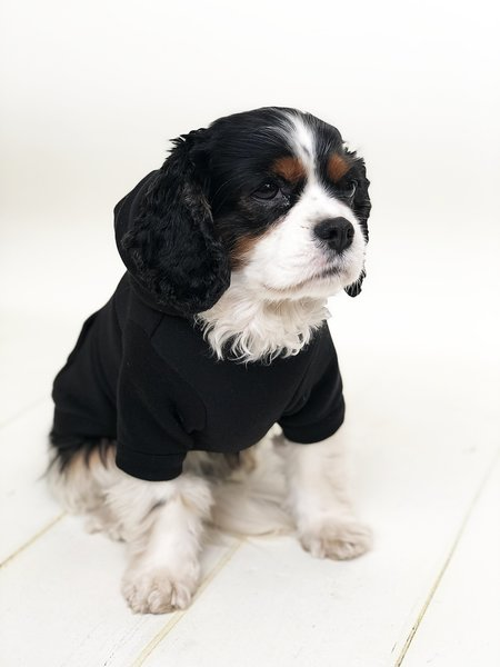 Personalised Dog Hoodie Black