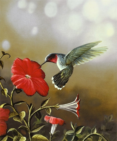 Picture of Ruby Throated Hummingbird