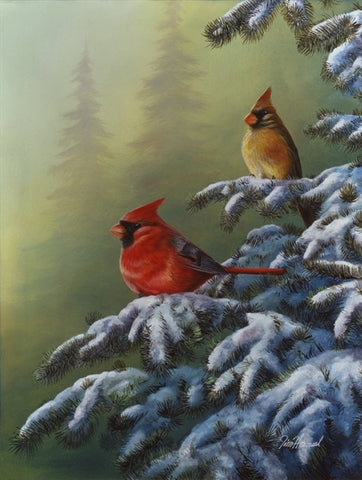 Winter Refuge - Cardinals