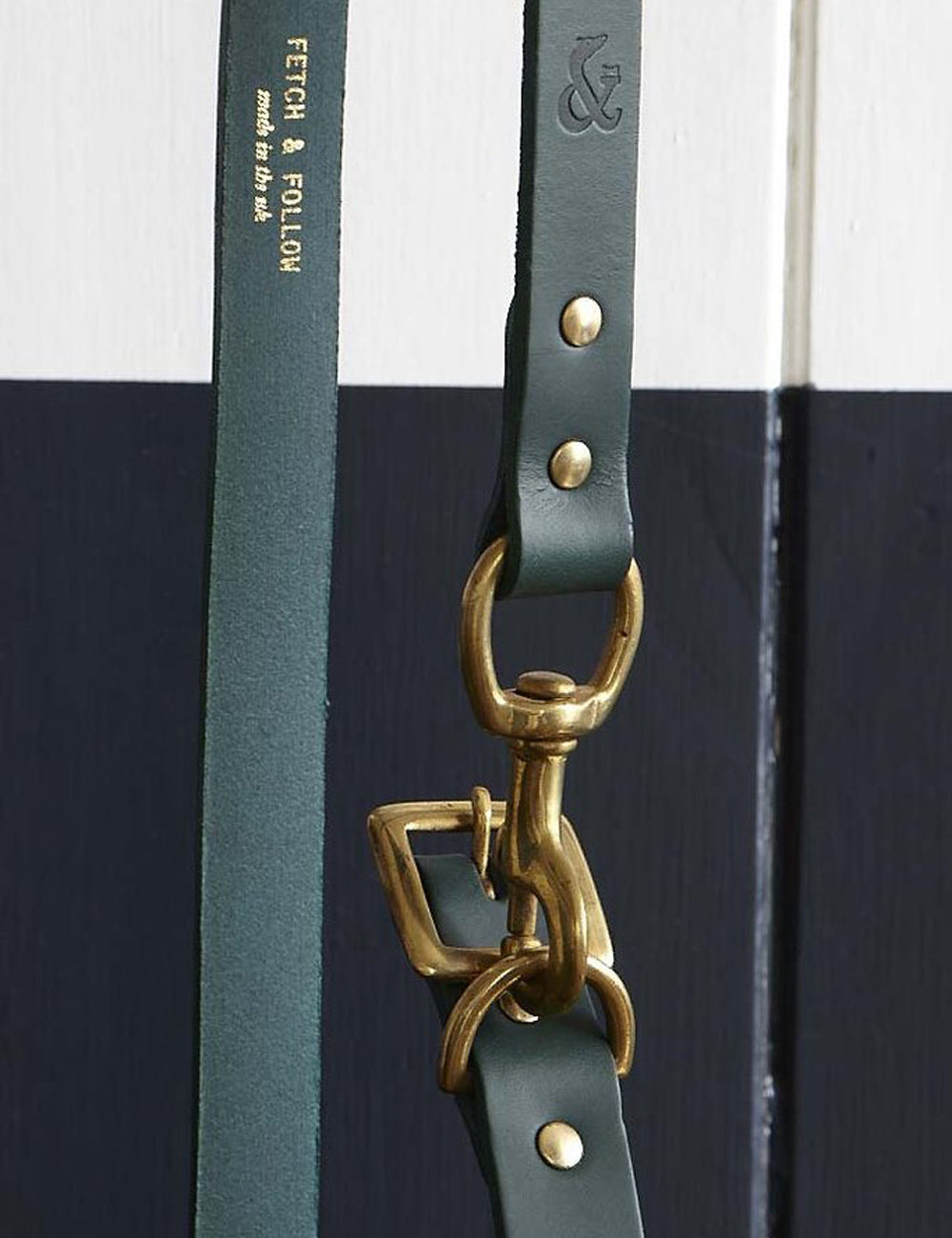 Leather Dog Leash | Green