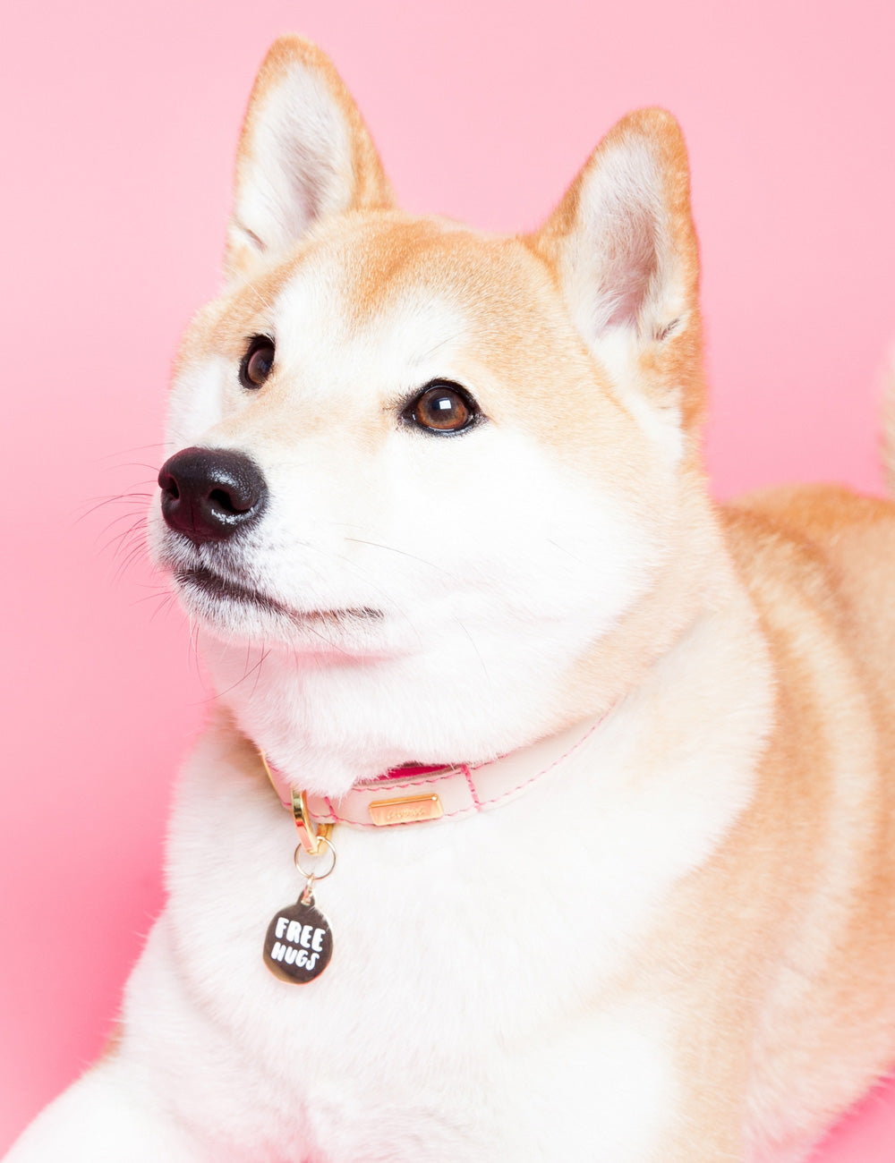 'Free Hugs' Collar Tag | Gold