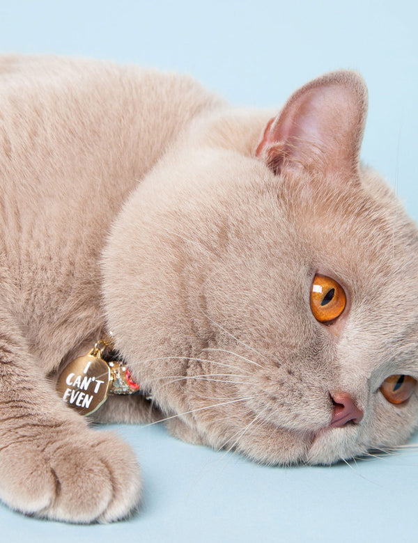 'I Can't Even' Collar Tag | Gold