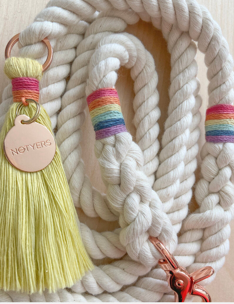 Sun Kissed Leash | White
