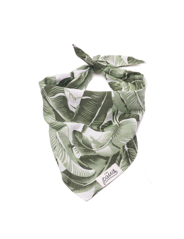 Into The Wild Bandana