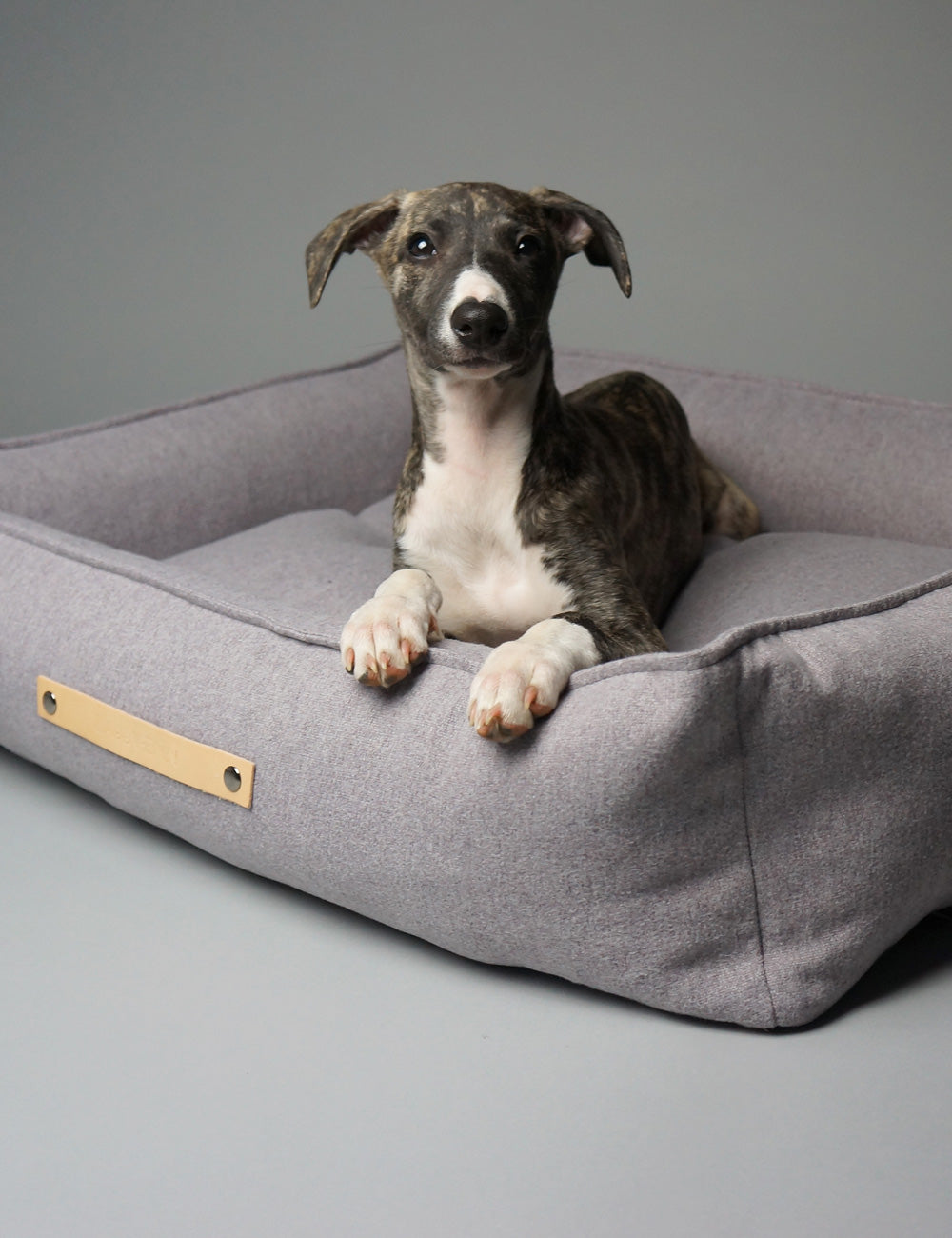 Movik Dog Bed | Grey